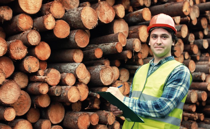 A man standing in front of a huge pile of cut trees.
