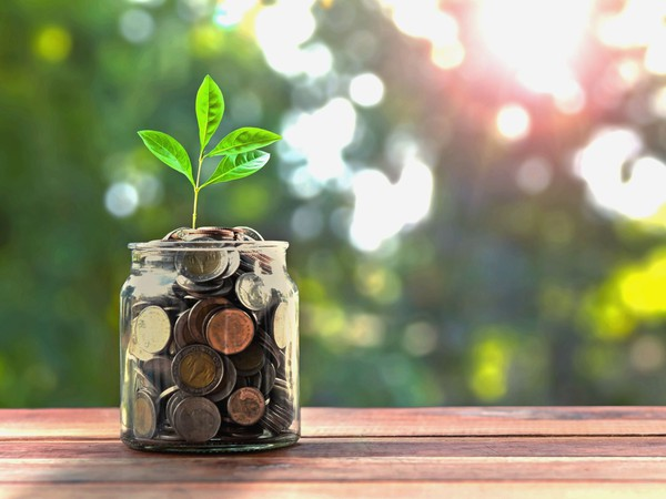 jar full of coins with plant growing from it savings money growing compound interest