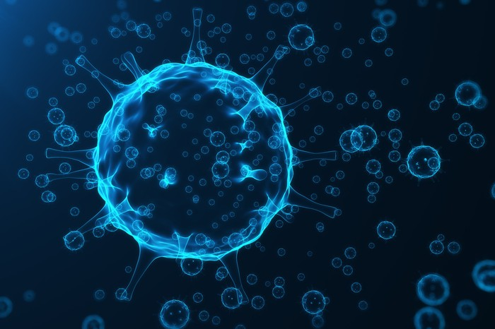 Human cancer cell.