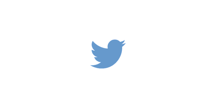 Twitter's blue bird icon
