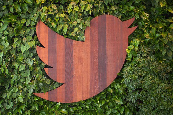 Picture of a small, wooden Twitter bird logo lying in grass.