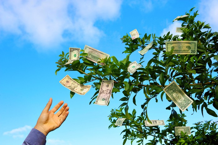A hand grabbing at a dollar bill hanging from a tree.