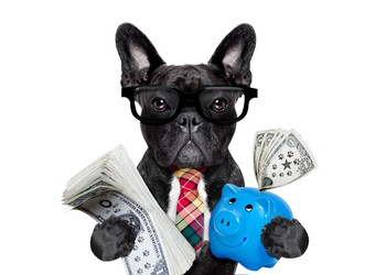 dog with money GettyImages-585054838 (1)