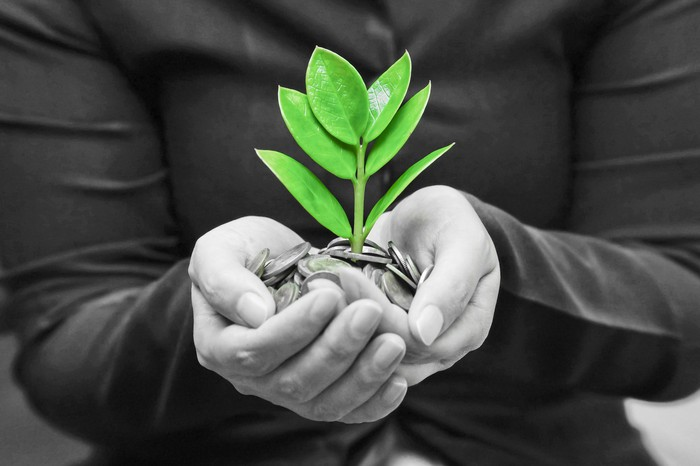 A person holding coins in his hand with a green plant growing from it.