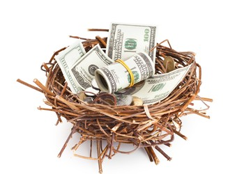 Dollar bills and coins in a birds nest