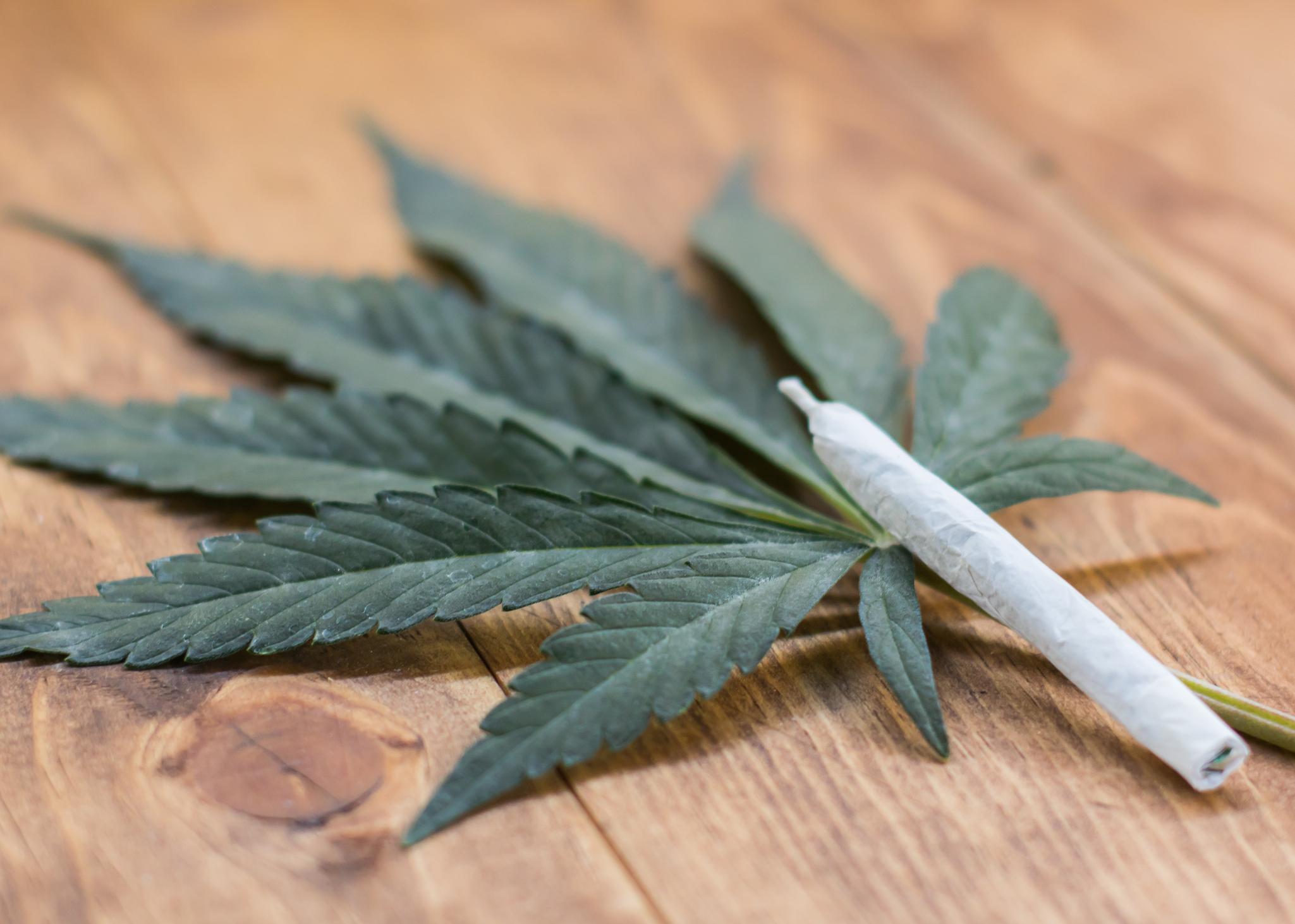 A cannabis joint lying atop a cannabis leaf on a table.