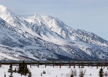 Oil Pipeline near snow covered mountain.