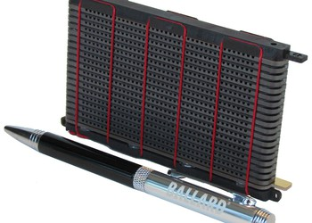 BLDP fuel cell