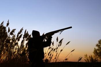 Hunter Shooting at Prey
