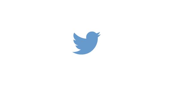 Twitter blue bird logo
