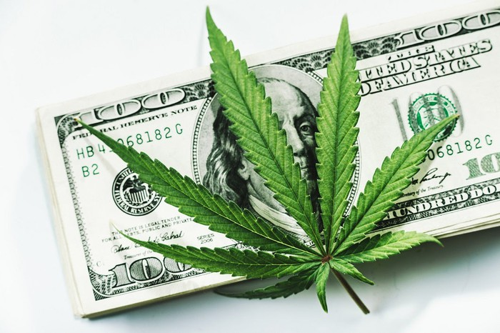 Marijuana leaf resting on top of a $100 bill.