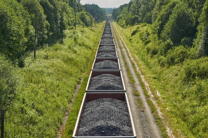Coal traveling by rail through a forest.