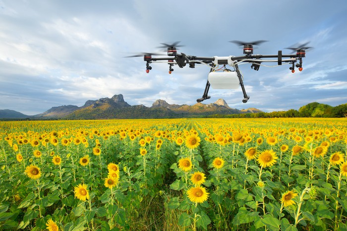 A drone monitoring a field of sunflowers with mountains and a blue sky in the background.