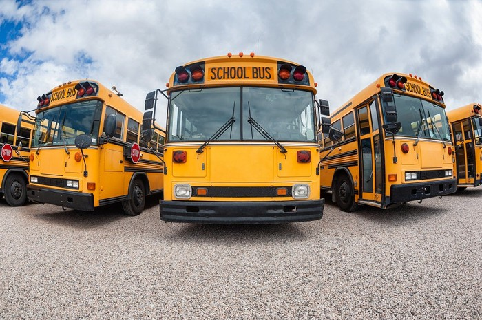School buses in a parking lot.