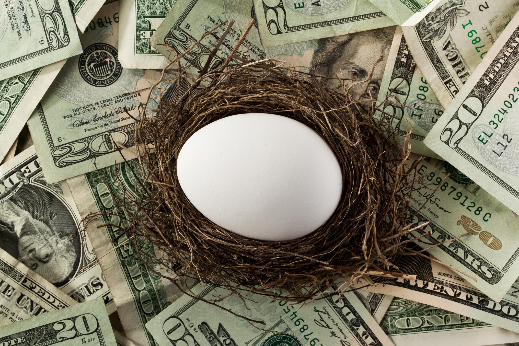 An egg in a nest atop a pile of twenty-dollar bills.