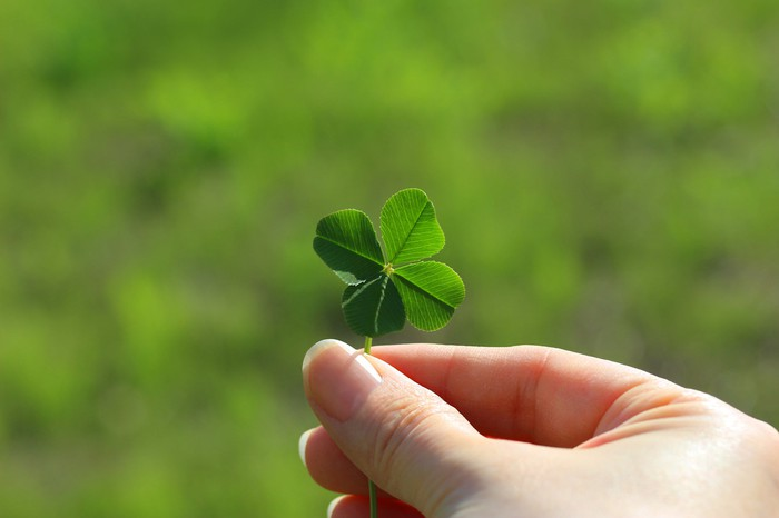 Four-leaf clover. Happy St. Paddy's Day!