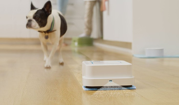 An iRobot Braava mopping bot cleaning a hardwood floor with a dog walking in the background.