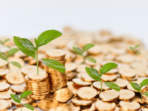 Seedlings sprouting from gold coins