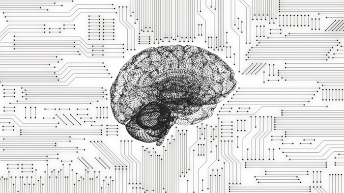 Artist's rendering of a brain in the middle of computer connection lines.