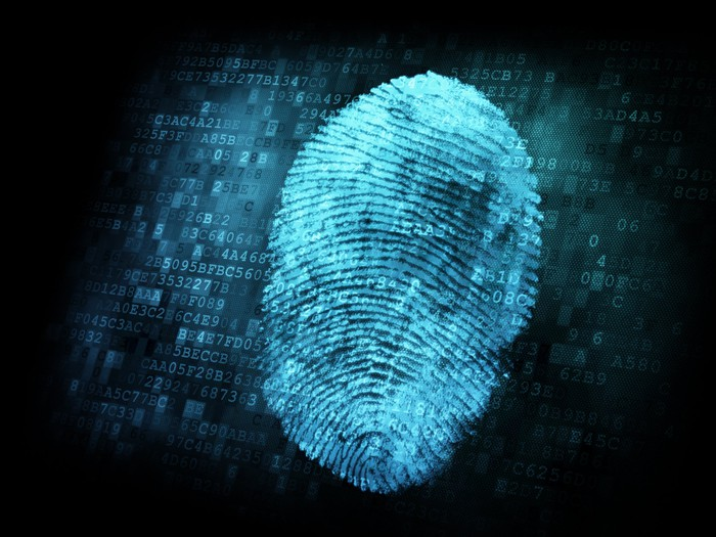A computer graphic of a fingerprint