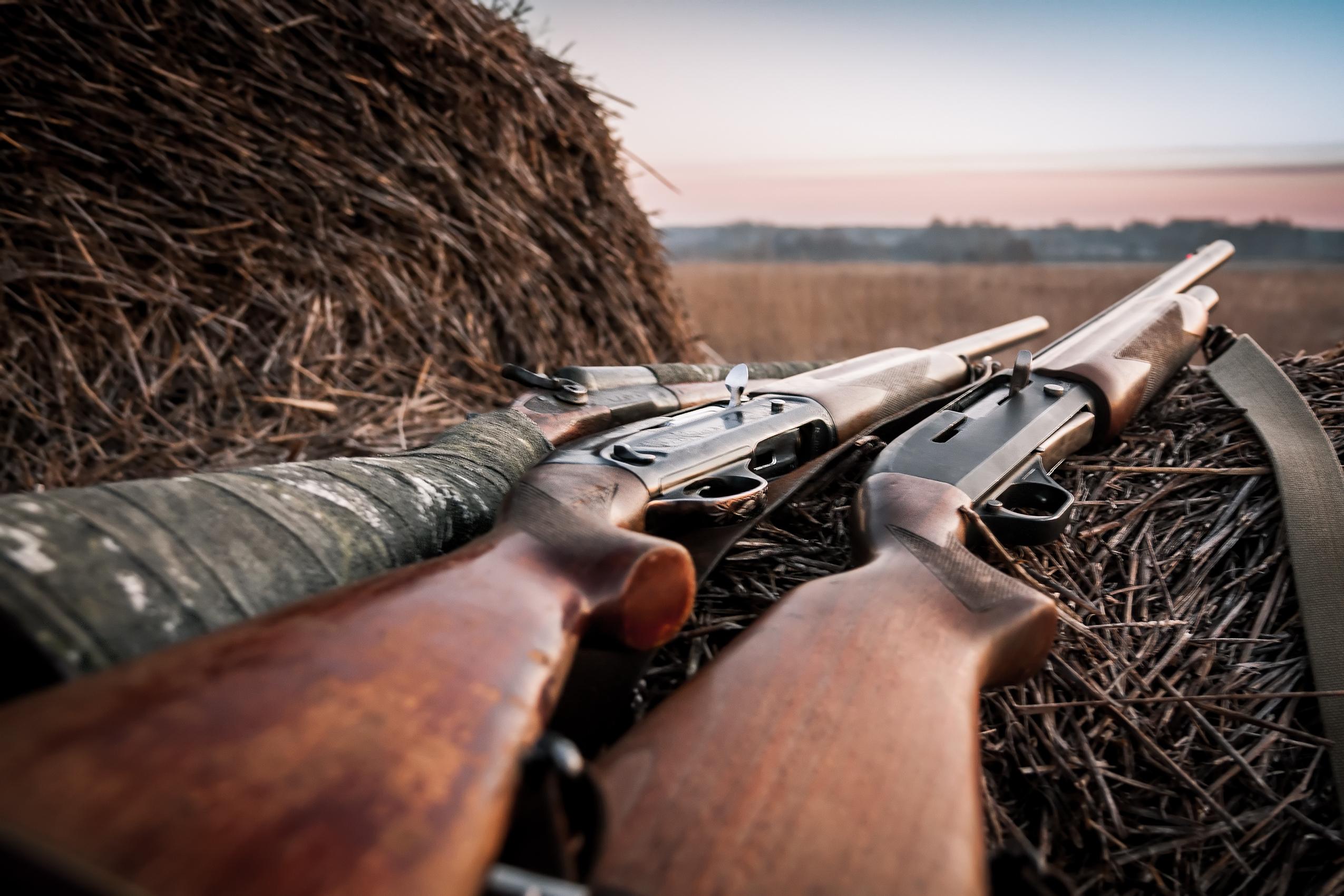 Three rifles sitting on hay bales.
