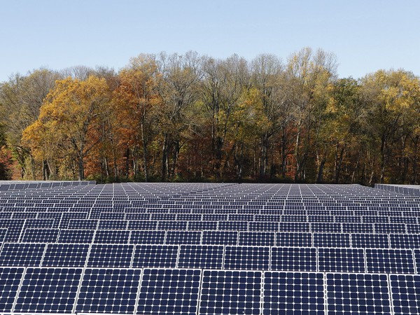 SunPower Power Plant With Forest Background