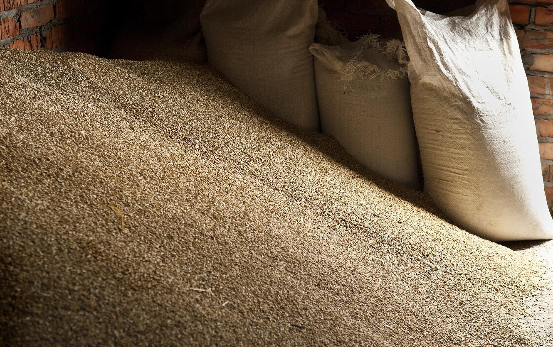 Grain GettyImages-604926346