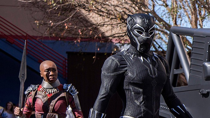 Okoye and Black Panther, in a still from the film