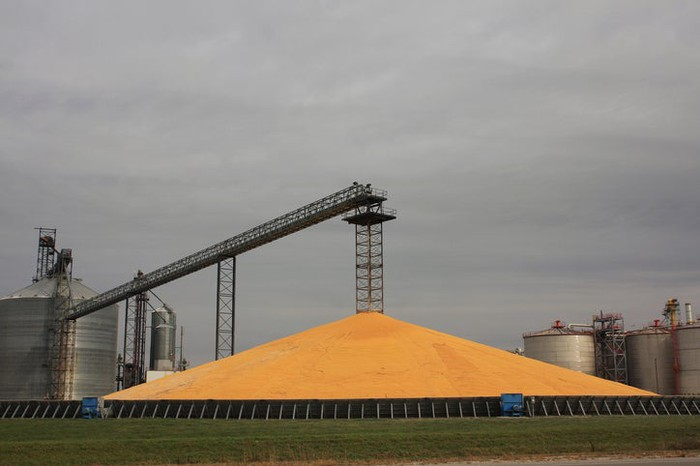 A giant corn pile outside a corn ethanol facility.