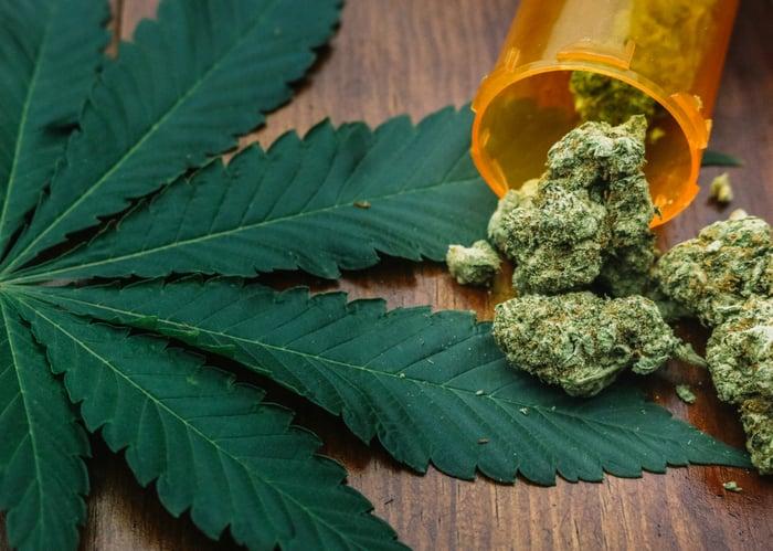 A tipped over jar of cannabis lying on a cannabis leaf.