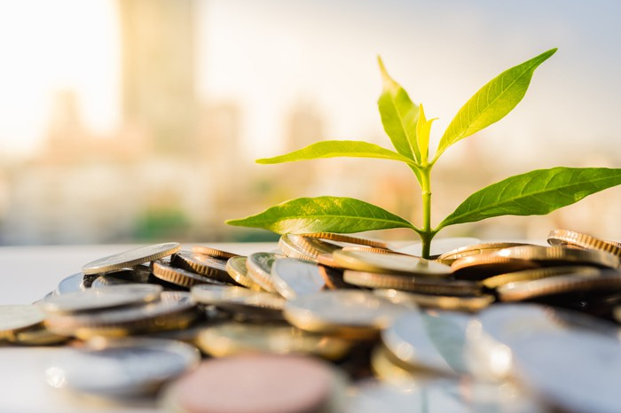 A plant begins to grow in a pile of coins on a desk. A city skyline is in the background.