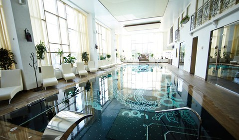 Upscale Indoor Swimming Pool Time Share Concept