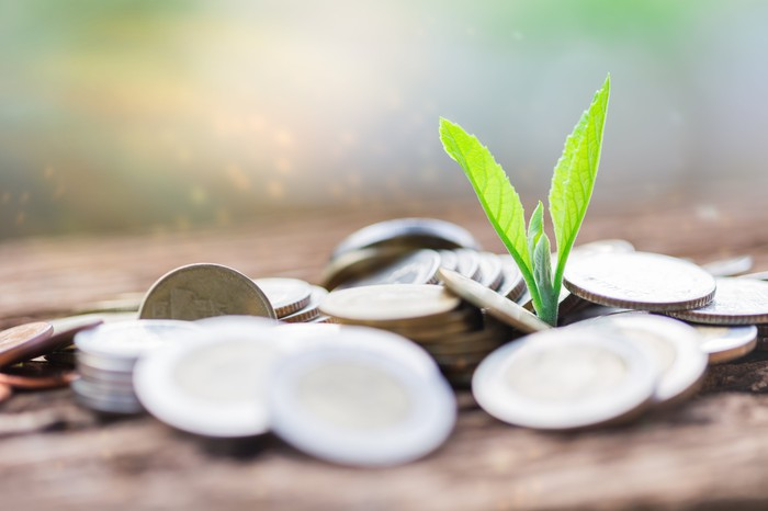 A plant sprout surrounded by a pile of coins.