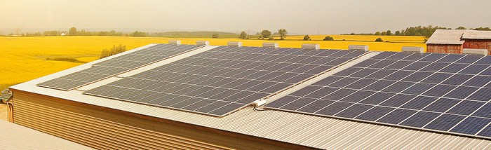 Solar panels on a roof of a building in a countryside setting surrounded by fields of yellow flowers.