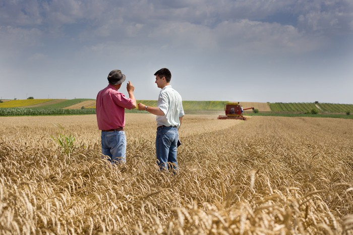 Two men in a wheat field.