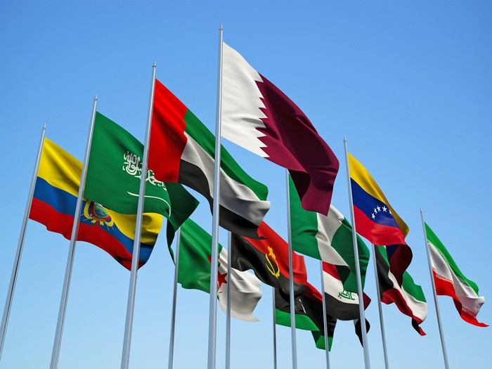 Flags of the OPEC nations flying with a blue sky behind them.