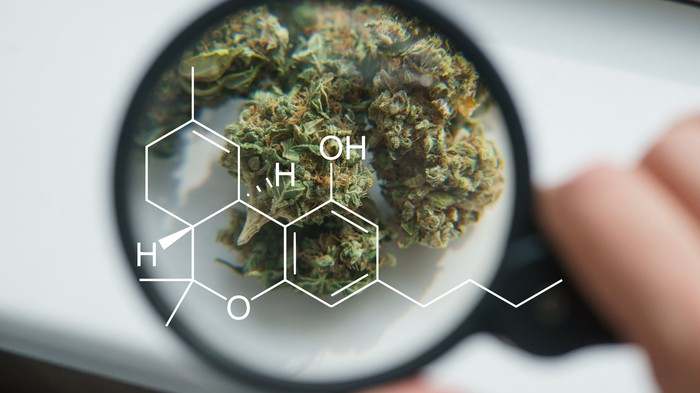 Marijuana under microscope and the chemical formula for cannabidiol.