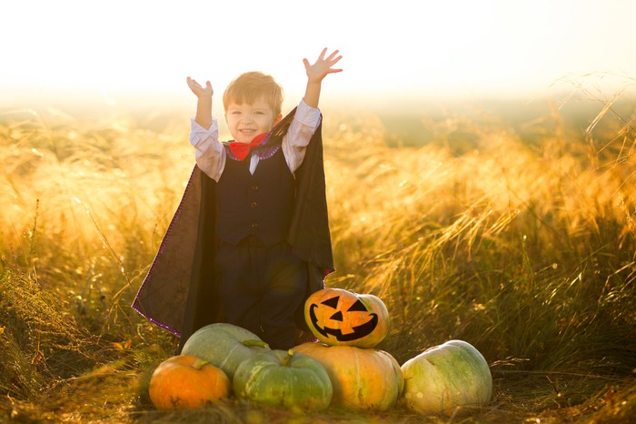 A child in a Dracula costume standing behind a pile of pumpkins in a field.