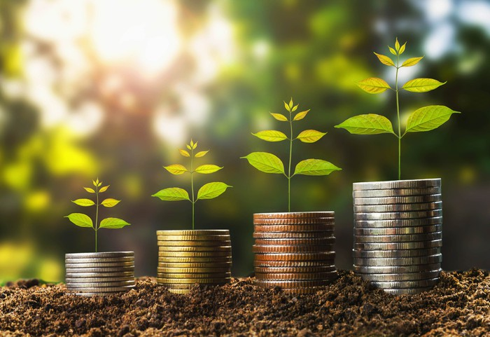 Stacks of coins in soil with plants on them to depict income growth.