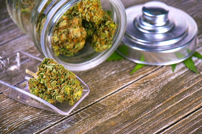 A tipped over jar filled with trimmed cannabis on a counter, lying next to a scoop with a cannabis bud inside.