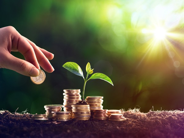 Growing A hand adding a coin to stacks of money with a small plant growing in the midst