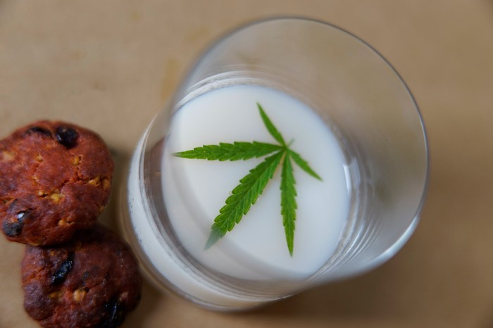 Marijuana leaf in a glass of milk next to two cookies
