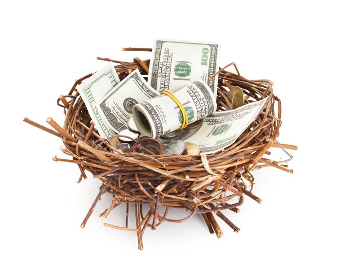 Dollar bills and coins in a bird's nest.
