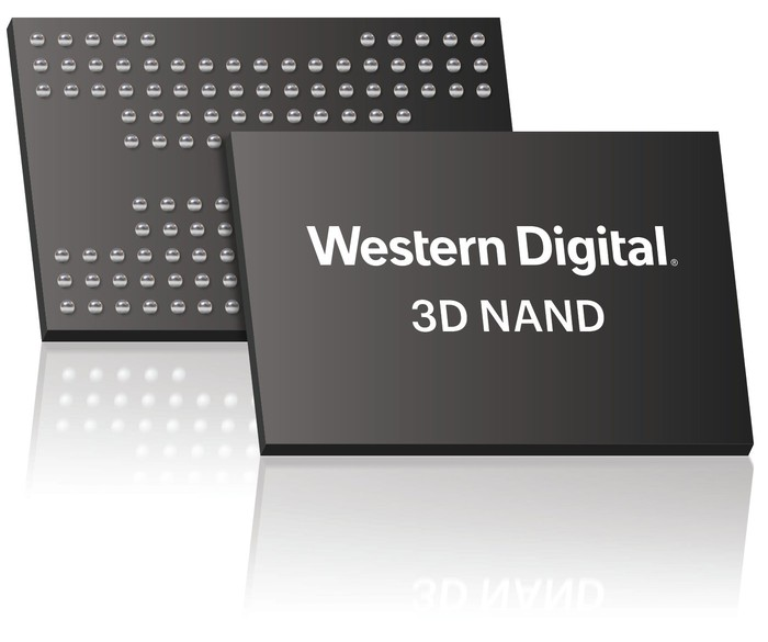 Western Digital flash memory chips.