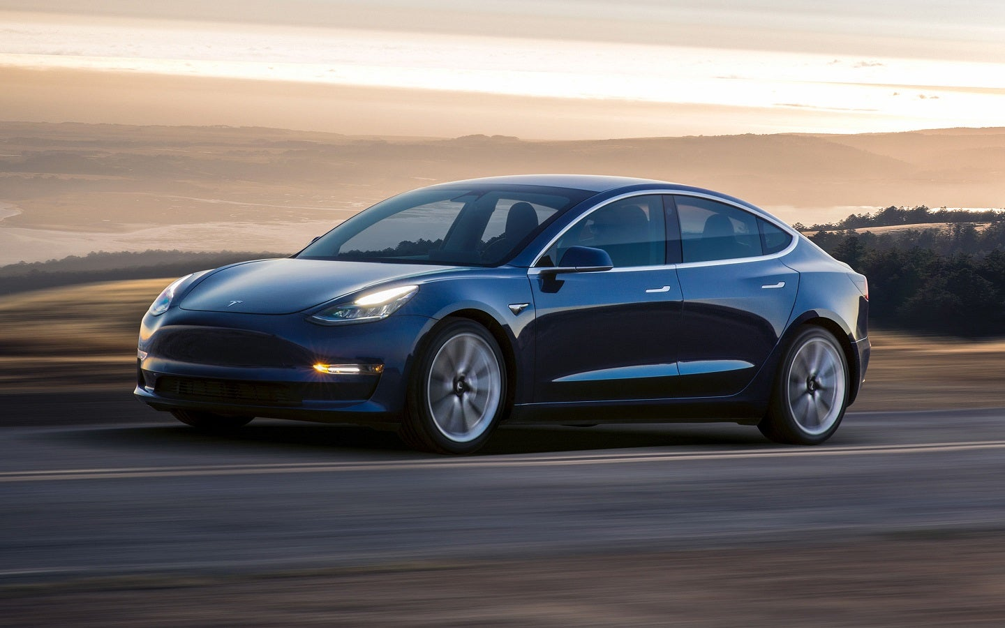 Dark-colored Model 3 sedan on a road in front of a hazy, picturesque landscape.