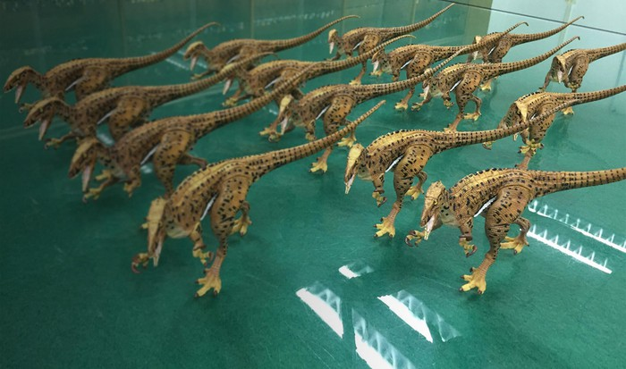 15 lifelike models of carnivorous dinosaurs, arranged on a glass table.