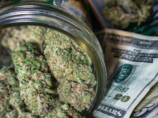 Marijuana Buds on Cash Cannabis Weed Pot Legal DEA Tax Getty