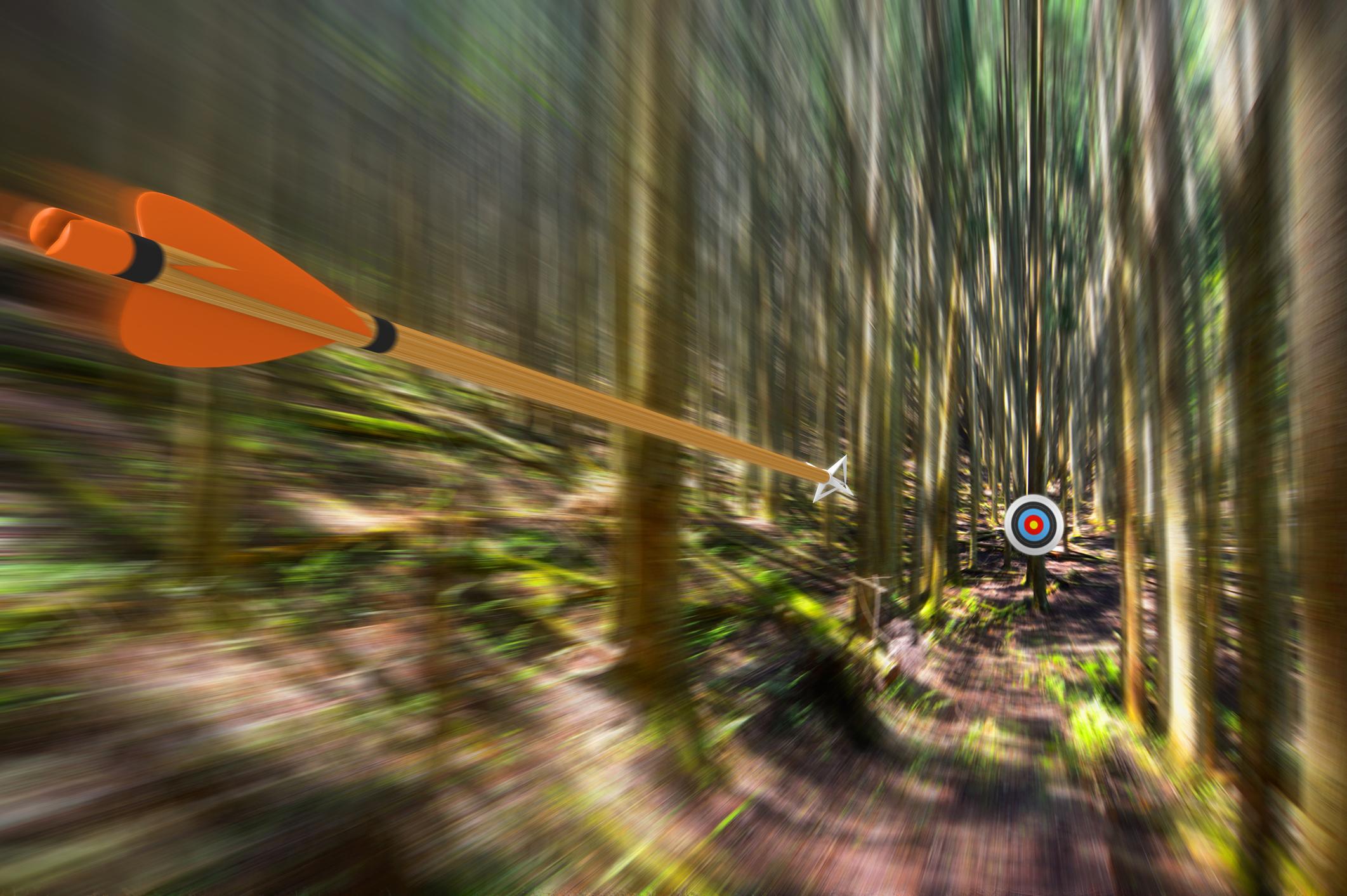 An arrow speeding toward a bull's-eye amid a grove of trees.