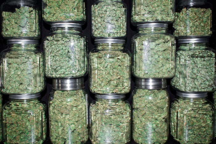 Jars filled with trimmed cannabis buds stacked on top of and next to each other.
