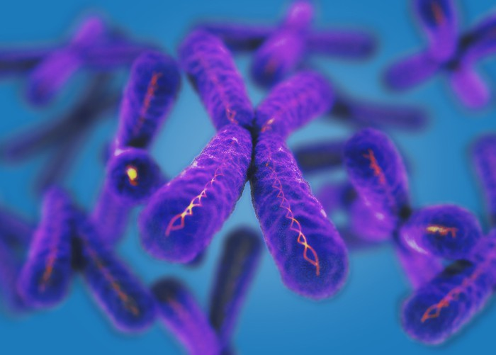 Purple chromosomes floating in a blue background.